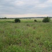 Участок 8,5 га в Московской обл., Каширском районе, д. Елькино, 97 км от МКАД, в 10 км от города Кашира.