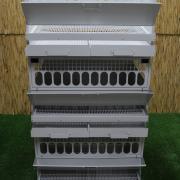 Клетки для бройлеров, кур-несушек, перепелов, цыплят, родительского стада
