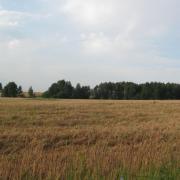 Участок 5,5 га для сельскохозяйственного использования в дер. Сосновка, Трубческого района, Брянской области