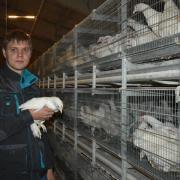 Казанец при поддержке Минсельхозпрода РТ стал фермером