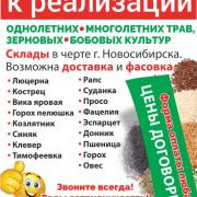 агрофирма семена