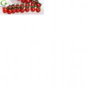 Семена томата черри Белидо F1