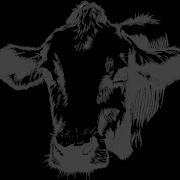 Расходы на 2 коров и телочек в феврале 2020 года