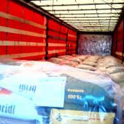 Семена кукурузы с большой силосной массой (Сербия)