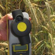 Влагомер зерна и муки всех злаковых HE-50 (Германия)