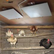 Инфракрасные обогреватели для птичников