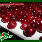 <p>kareliaberriesltd_products_cranberries-ellectronically_sorted_01rus.jpg</p>