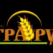 logo-na-klip.png