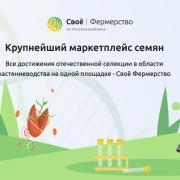 Аграрии получили возможность заказать лучшие селекционные семена на маркетплейсе РСХБ