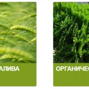 """Комбинат агротехнологий """"Азур-Нива"""""""