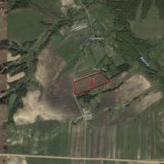 Земельный участок 5,5 га для сельскохозяйственного использования в дер. Сосновка, Трубческого района, Брянской области,