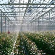 Система туманообразования (влажность, охлаждение)