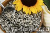 Маслозавод покупает подсолнечник масличный урожая 2019 года от 50 тонн