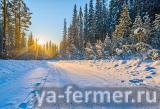 Ищу спутника жизни для переезда ко мне в Сибирь.