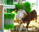 Автоматические щетки-чесалки для животных(коров, телят, коз ...