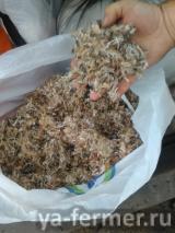 Использование мелко рубленного джута, как укрывного материала в сельском хозяйстве
