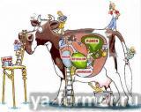 Увеличение потребления корма.jpg