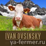 Жидкая концентрированная кормовая добавка с аминокислотами Иван Овсинский