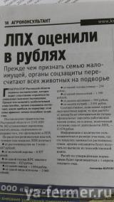 ЛПХ оценили в рублях