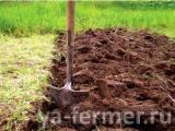 mineral_fertilizers_in_the_soil.jpg
