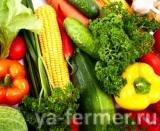 Бенгальский метод выращивания овощей