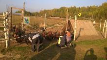 куры в землянке на ферме