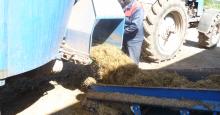 Загрузка корма в вагончик
